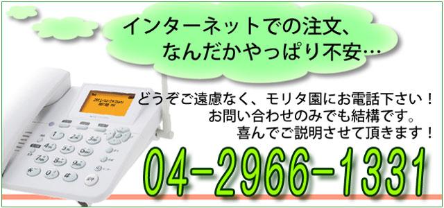 インターネットでのご注文が不安でしたらお電話下さい。